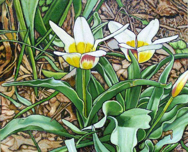 """Tulip (2008, 15"""" x 12.25"""") Sold"""