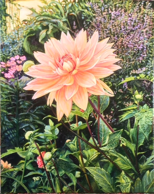 "Dahlia #3, oil on canvas,16""x20"", 2018 SOLD"